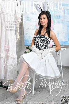 AmourAngels - Sabina (Zelda B) - White Bunny